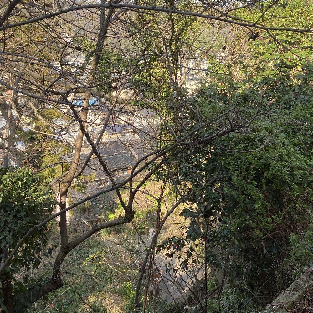 宝町教室からの眺め